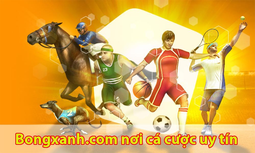 Bongxanh.com trang web cá cược uy tín, chất lượng