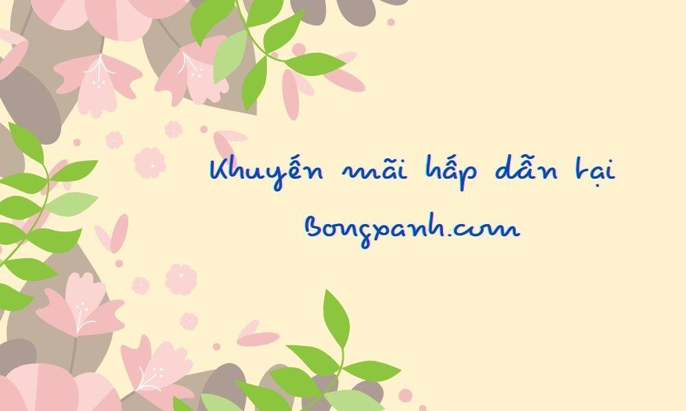 Chương trình ưu đãi hiện có tại Bongxanh.com