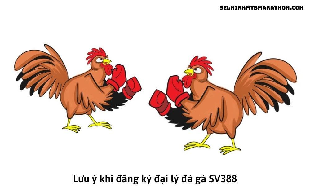 Lưu ý khi đăng ký đại lý đá gà SV388